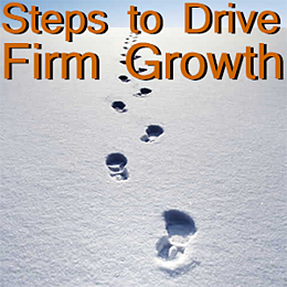 drive firm growth