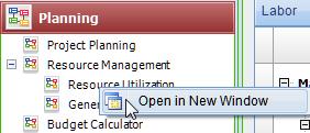 Deltek Vision Resource Planning