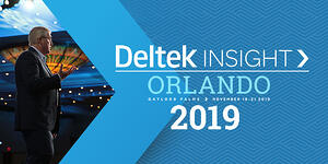 Deltek Insight 2019