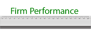 Firm Performance