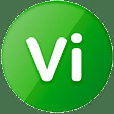 Deltek Vision logo